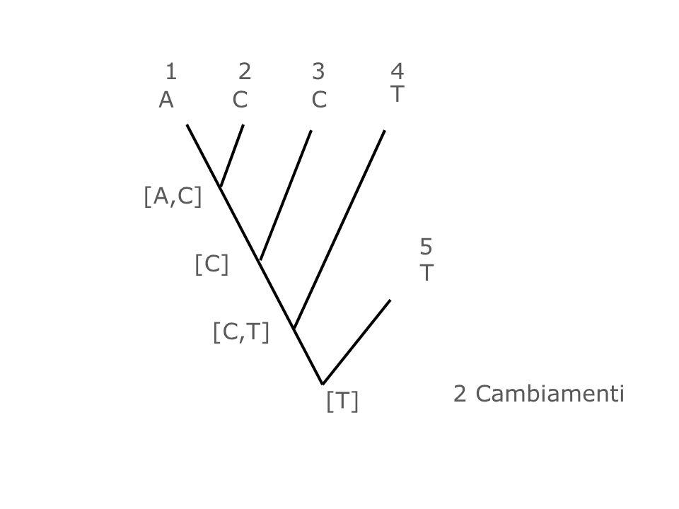 1 2 3 4 T A C C [A,C] 5 [C] T [C,T] 2 Cambiamenti [T] 64
